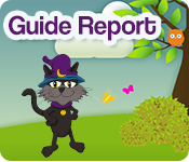 The CGG Guide Report