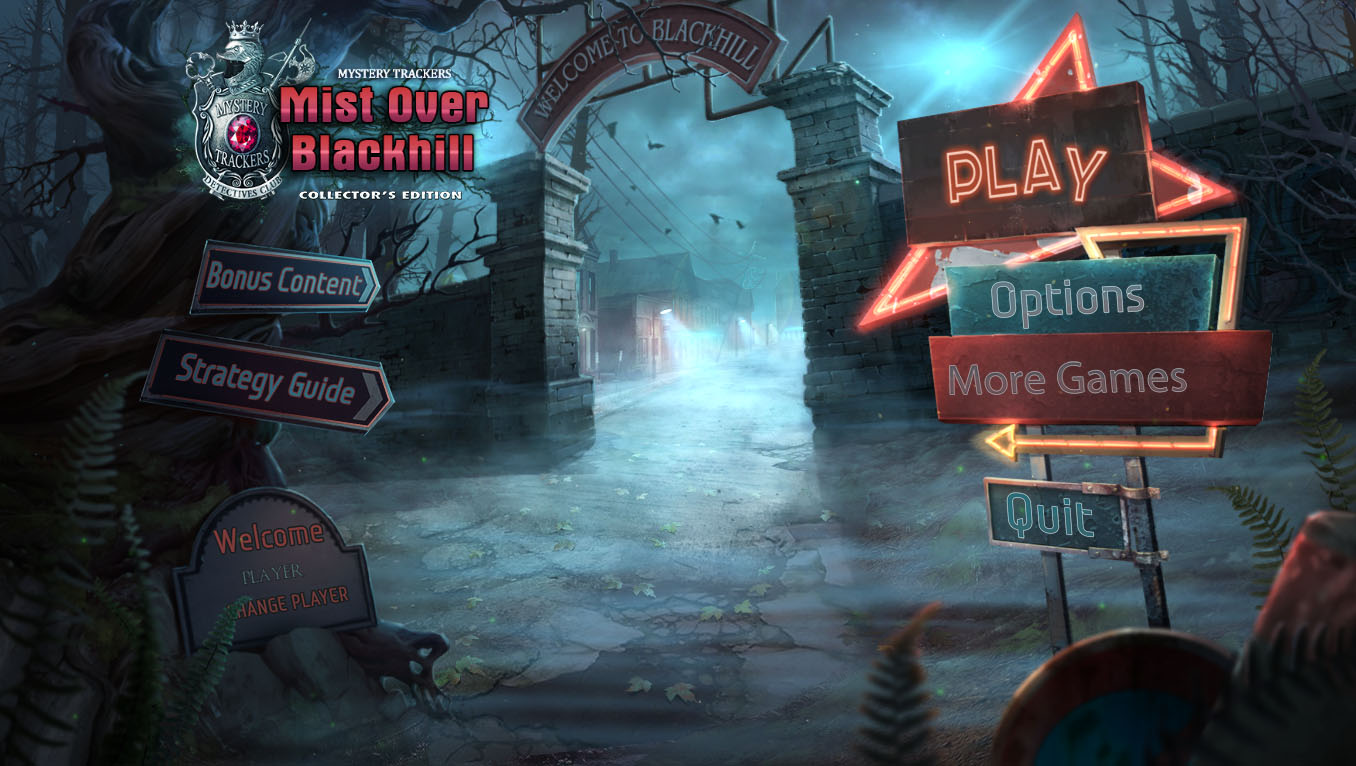 Mystery Trackers: Mist Over Blackhill Walkthrough Puzzle Screenshot