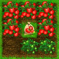 ranch_rush:tomatoes.jpg